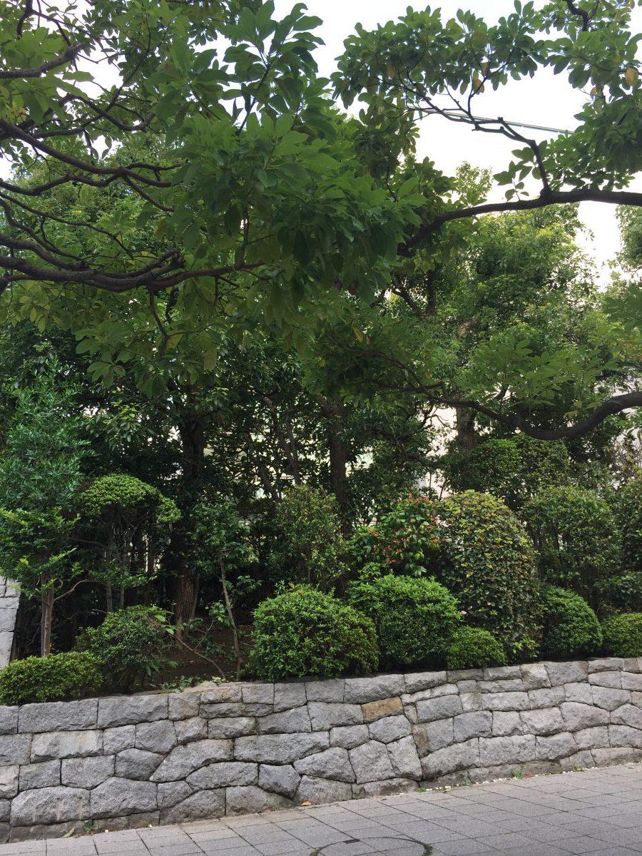 千葉県の軽貨物ドライバーの言葉使い 【軽貨物運送の検証ブログ】
