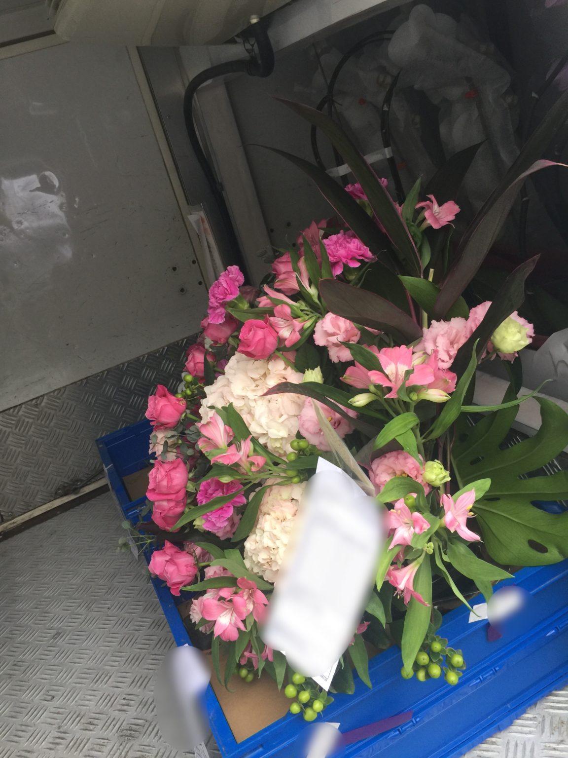 観葉植物やお花の軽貨物配送 シフタープロ